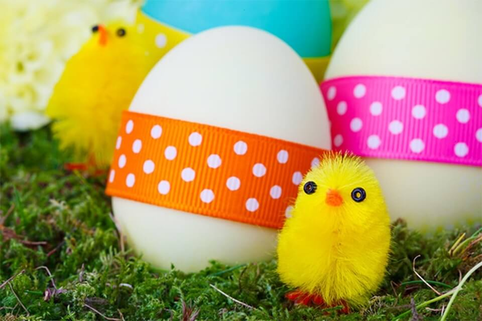 The 4 Eggs of Wisdom - tips for job hunting over Easter
